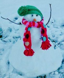 snowman on day of apothecary delivery